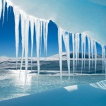 Antarctica – the Crystal Desert by Wayne Lynch