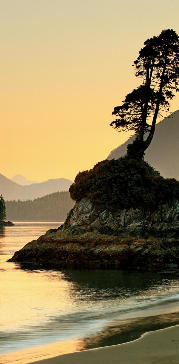 Nature is my Kingdom British Columbia Canada canon 5D MK II 70-200mm Manfrotto Tripod