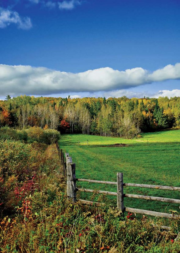 PHOTONews Autumn Flickr Contest Back Roads of the Bar River Area Frank De Simon Sault Ste Marie Ontario