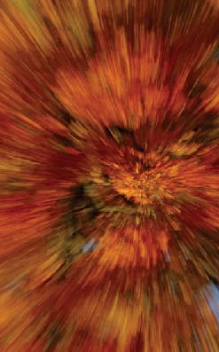 PHOTONews Autumn Flickr Contest Vortex of Colour Bruce Gunion Kingston Ontario