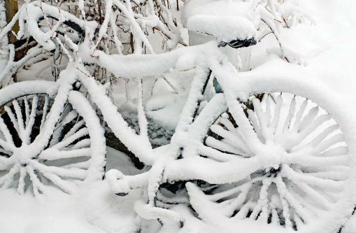 PHOTONews Winter 2010 Challenge Snow Covered Bicycle Scarborough Ontario Mike Young