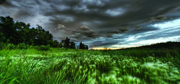 Photo Copyright Dan Jurak - Summer Landscapes 2