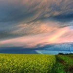 Summer Landscapes by Dan Jurak