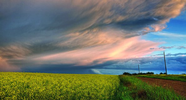 Photo Copyright Dan Jurak - Summer Landscapes 4