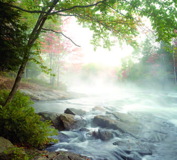 Photo Copyright Norman Piluke - Rapids in the Mist