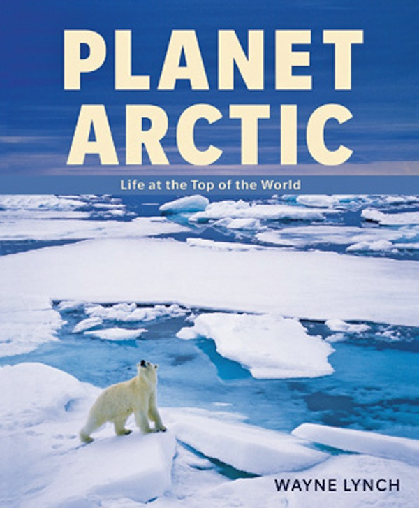 Ginette Lapoint - PHOTONews Bookshelf - Planet Arctic Life at the Top of the World by Wayne Lynch