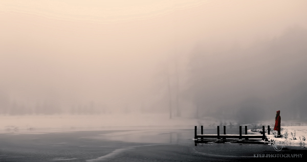 Kevin Pepper - Photographing in the Fog - A Moment for  Pause