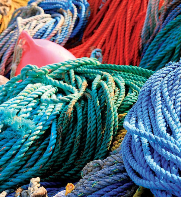 Eli Amon - Gearing up for Photo Adventures - Bright Coloured Ropes