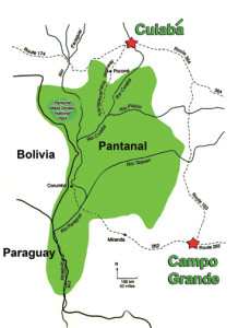 Wayne Lynch - The Pantanal - Brazil's Wildlife Paradise - Brazil Map