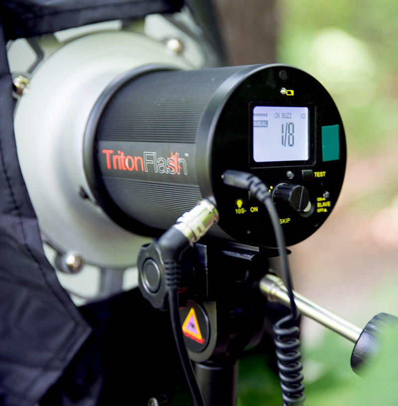 TritonFlash Review – Heads & Speedlites