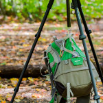 Review – Vanguard Alta Pro 263AT & Kinray