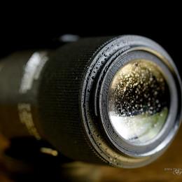 Tamron SP 90mm F/2.8 Di Macro 1:1 VC USD Review