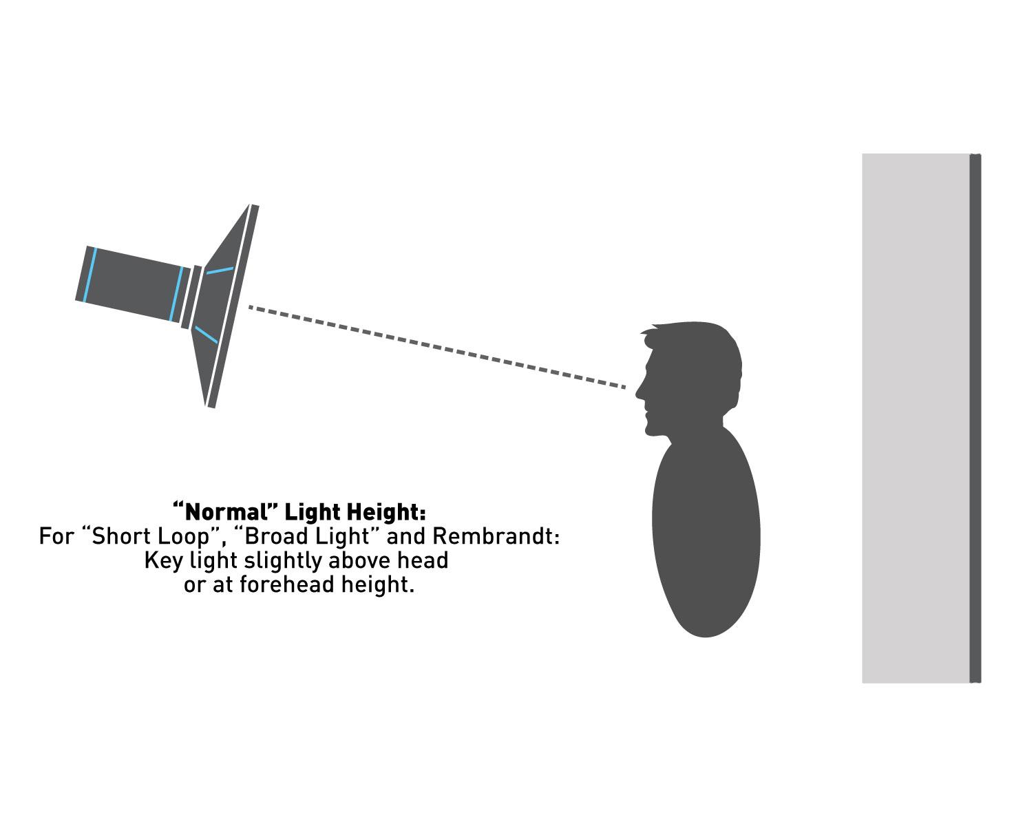 Sensational Loop Lighting Photography Diagram Wiring Cloud Strefoxcilixyz