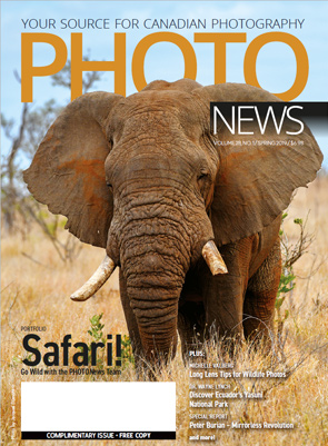 Safari Magazine In English Pdf